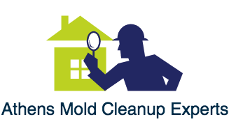Athens Mold Cleanup Experts